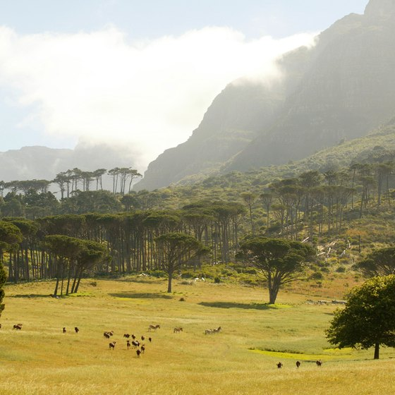 The South African countryside is a spectacular backdrop for trail riding.