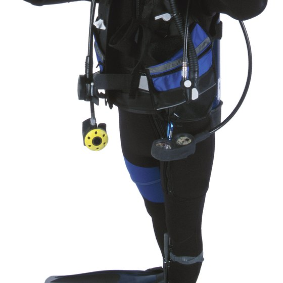 You can learn to SCUBA dive in Orlando.