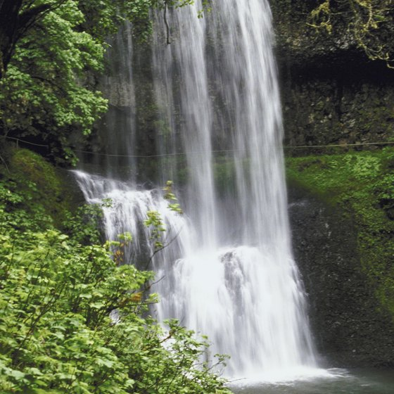Many waterfalls in Connecticut are hidden in dense forests.