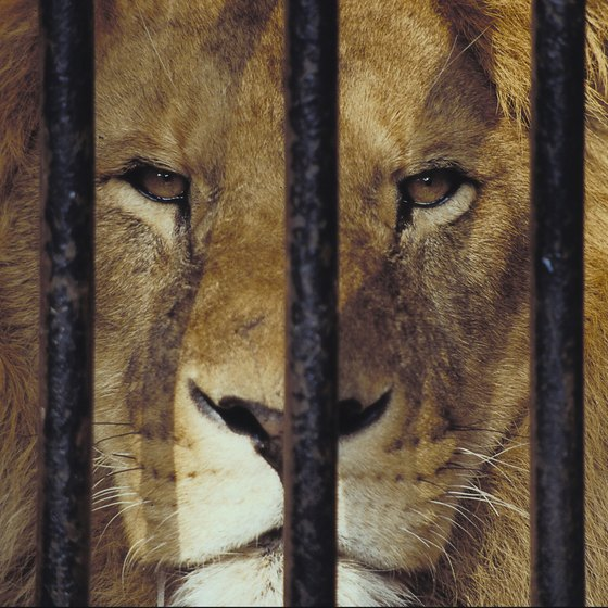 Happily the days of animals imprisoned in tiny cages are largely gone.