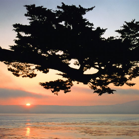The Pacific makes a perfect backdrop for a romantic getaway to Monterey.