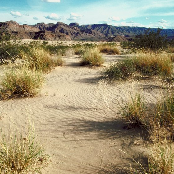 Hike the versitile desert areas near Las Vegas, Nevada.