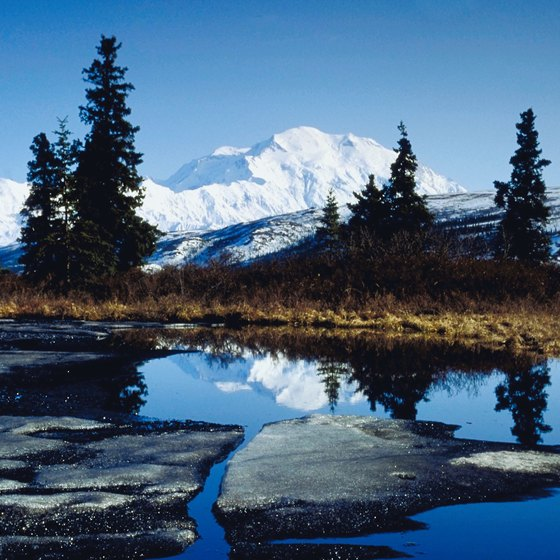 Discover Denali by bus tour, flightseeing cruise or on foot.