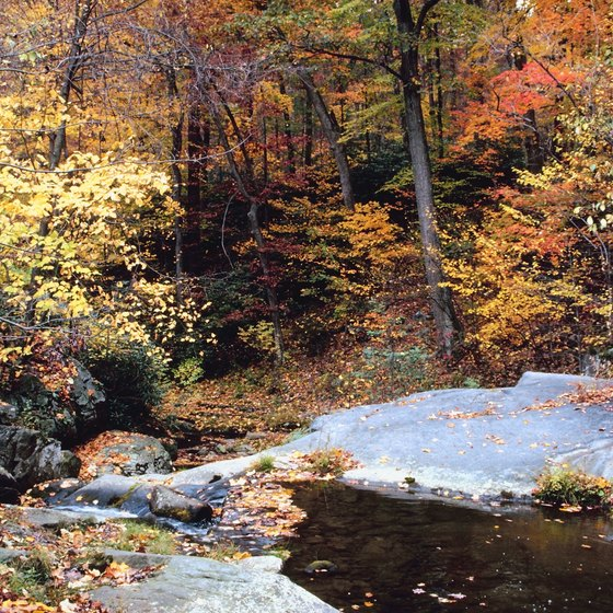 Swimming Holes near Avondale, Pennsylvania | USA Today
