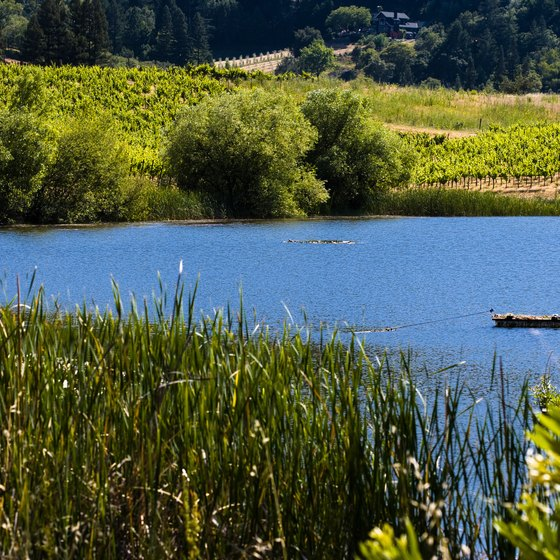 Stay near a lake when planning a wine country vacation.