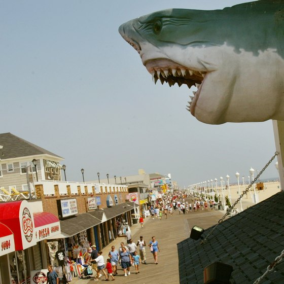A shark model hangs over Ocean City's boardwalk.