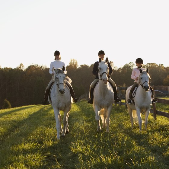Missouri offers its share of horseback riding trails.