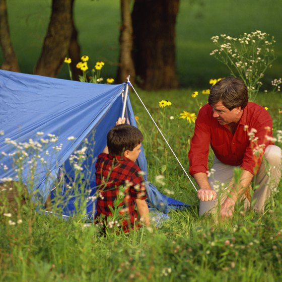 Set up your tent at one of several grassy campsites near the Creation Museum.