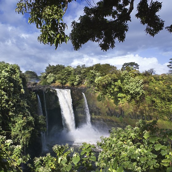 5 Best Things to Do in Hilo