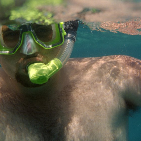Most Ottawa area stores offer training lessons to help you learn to use your snorkeling gear.