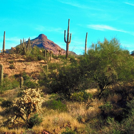 Arizona is an attractive travel destination.