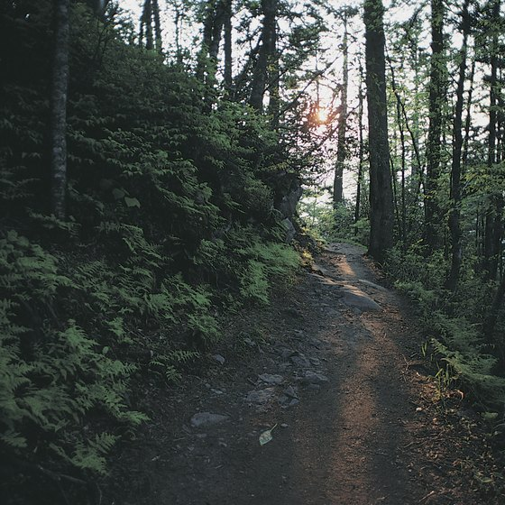 The Appalachian Trail stretches more than 2,000 miles from Georgia to Maine.
