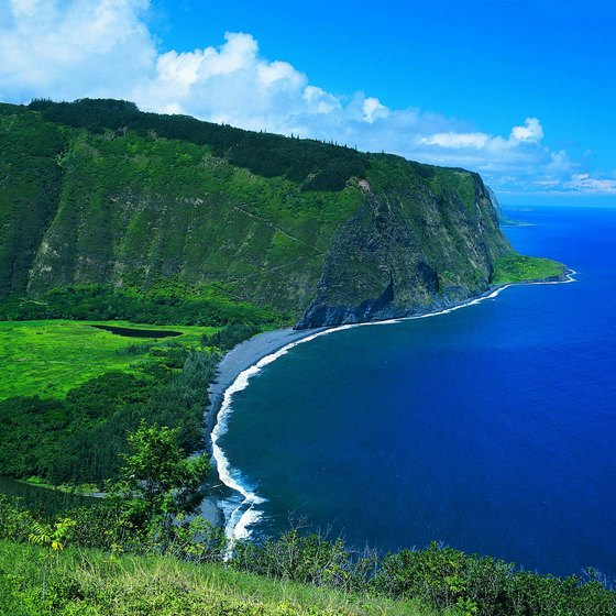 Hawaii is a tropical destination in the Pacific Ocean.