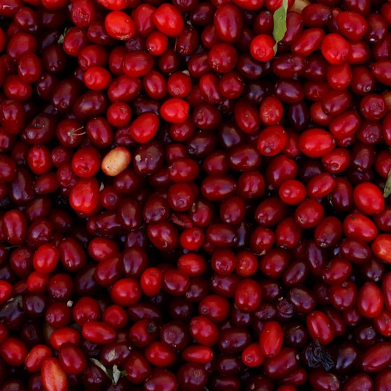 Cranberry farms can be found in Michigan's Upper Peninsula.