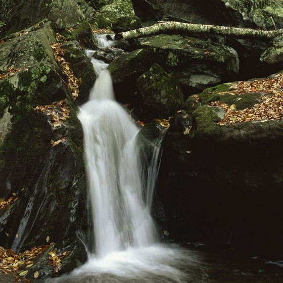 Shenandoah National Park features several hikes of varying difficulties that lead to waterfalls.