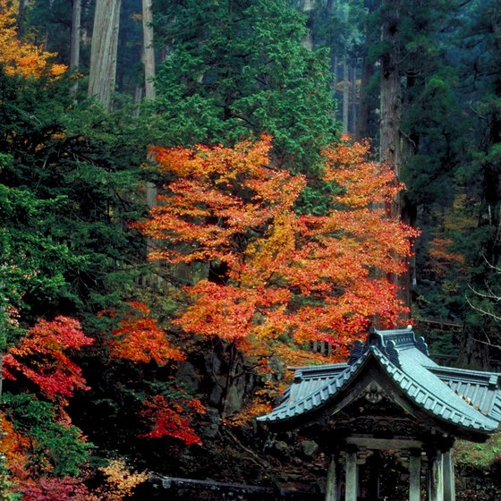 October brings brightly colored foliage to Japan's mountains.
