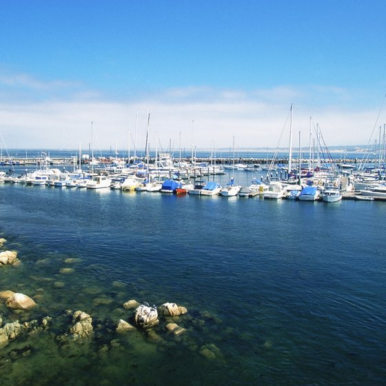 Monterey Bay attracts fishermen, sailers, scuba divers and whale-watchers.