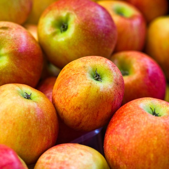 The Bridgeville Apple-Scrapple Festival focuses heavily on locally grown apples.