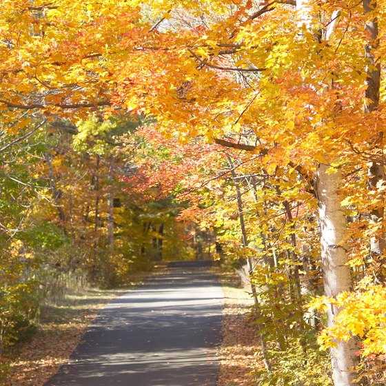Fall foliage in West Virginia is at its peak in October.