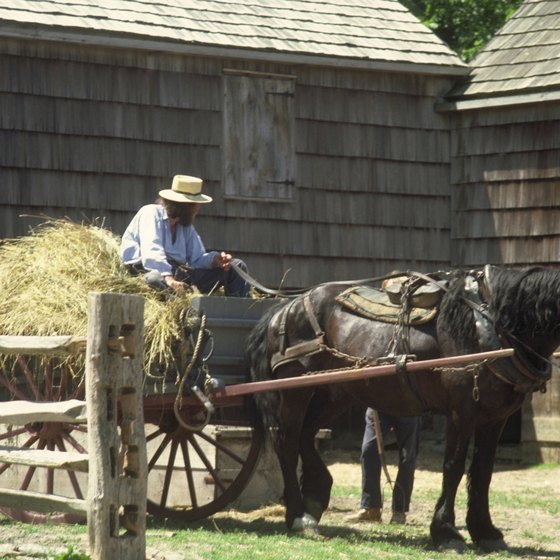 Tour an Amish farm to learn about their beliefs and practices.