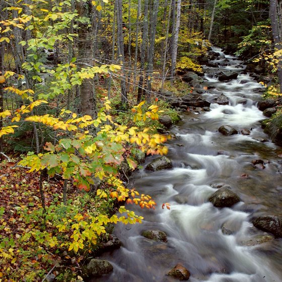 Journey though North Conway, New Hampshire, filled with babbling brooks and fall foliage.
