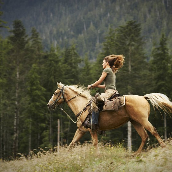 Horseback riding offers an enthralling way to see the countryside.