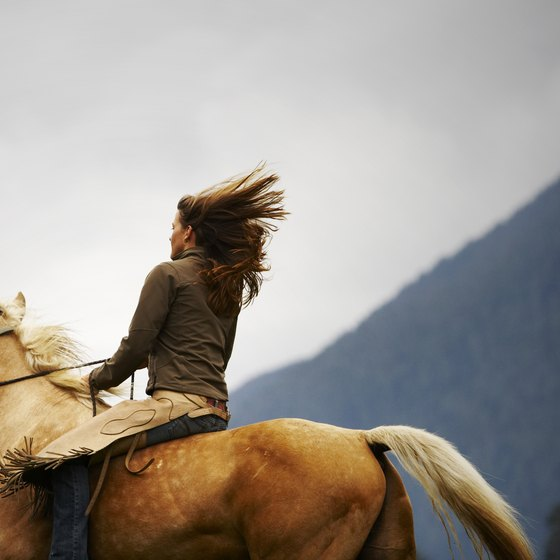 Horseback riding in Vancouver is a great way to get active while enjoying the area's natural beauty.