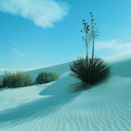 White Sands National Monument is 15 miles west of Alamogordo, New Mexico.