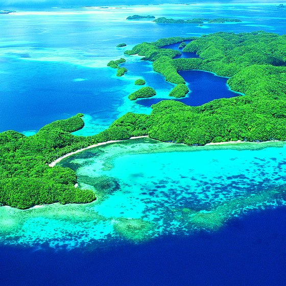 Clear waters, vibrant reefs and a unique history attract snorkelers and divers to Palau.