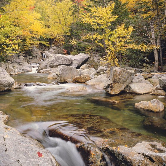 Campton offers the classic beauty of New England's outdoors.