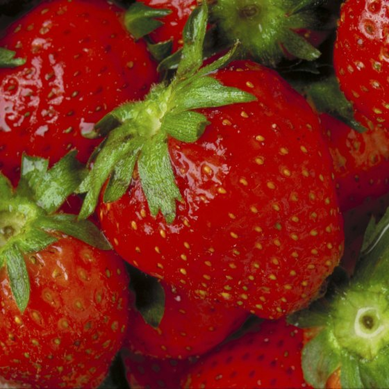 The berries are the unquestioned star of the annual Floral City Strawberry Festival in Florida.