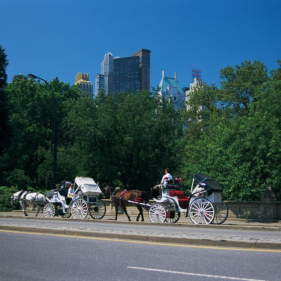 Splurge on a horse-drawn carriage ride in Central Park.