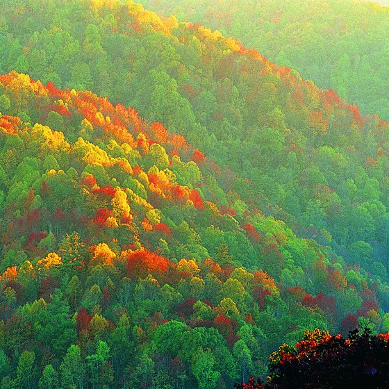 The Great Smoky Mountains span the North Carolina - Tennessee border.