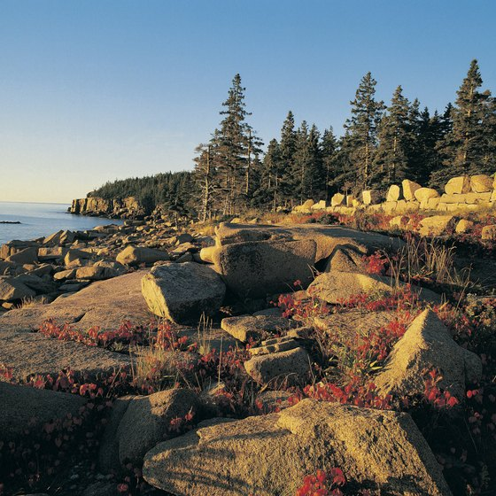 The shoreline of Acadia National Park in early autumn