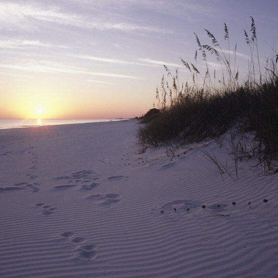 Visitors will find plenty of pristine white-sand beaches in the state parks near Santa Rosa Beach along Florida's Emerald Coast.
