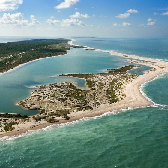 Cayo Costa State Park has 9 miles of beach on the Gulf of Mexico.