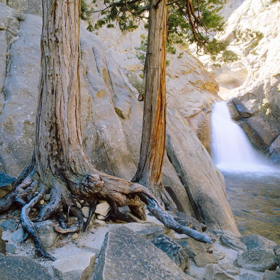 Campers can find many campsites in Kings Canyon National Park.