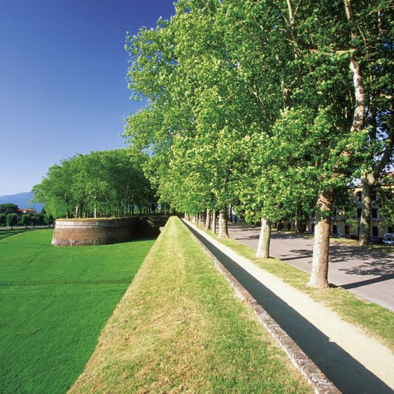 Lucca's medieval walls have been paved and landscaped to resemble a park, and biking is encouraged.