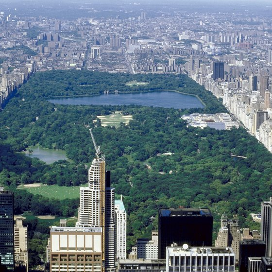 New York's Central Park is a good pick for large groups.