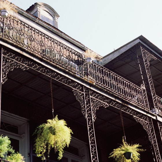 Dog Friendly Hotels In New Orleans