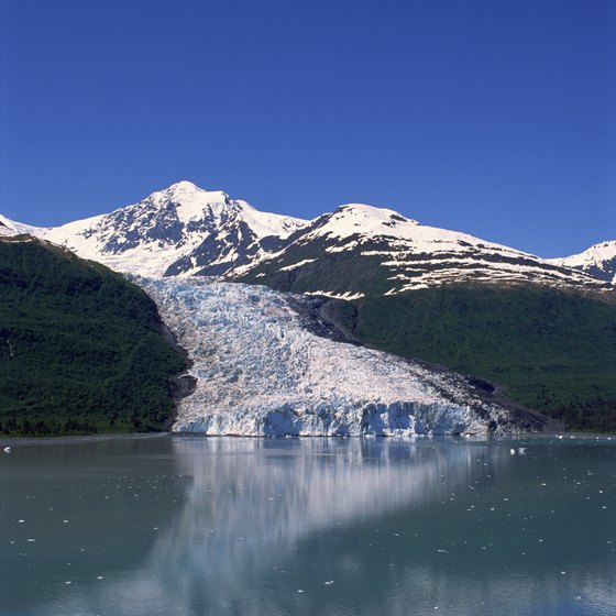 An Alaskan cruise exposes you to bears, whales, glaciers and the majesty of nature.