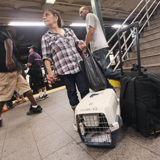 A subway platform can be scary, so make sure your dog is secure in its carrier.