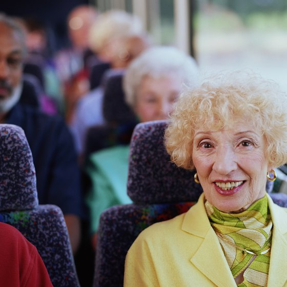 Taking a bus tour is one way to see, and learn about, the sights of Michigan.
