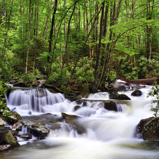 Scenery such as this Gatlinburg river is bound to set a romantic mood.