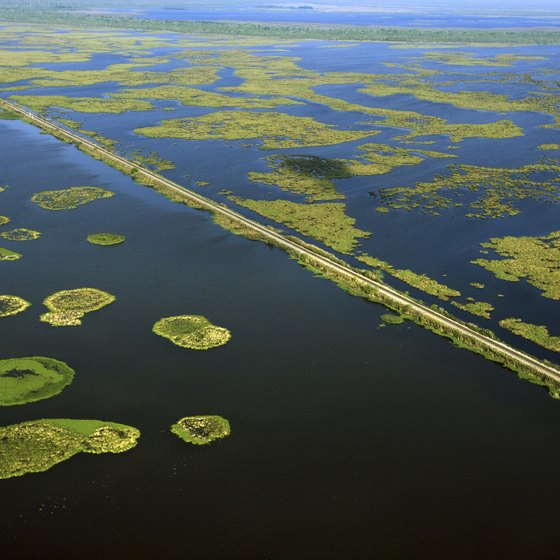 Louisiana's landscape consists of land interspersed with water.