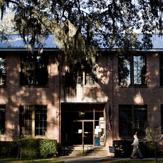Moss-filled oak trees shade town hall in Micanopy, Florida.