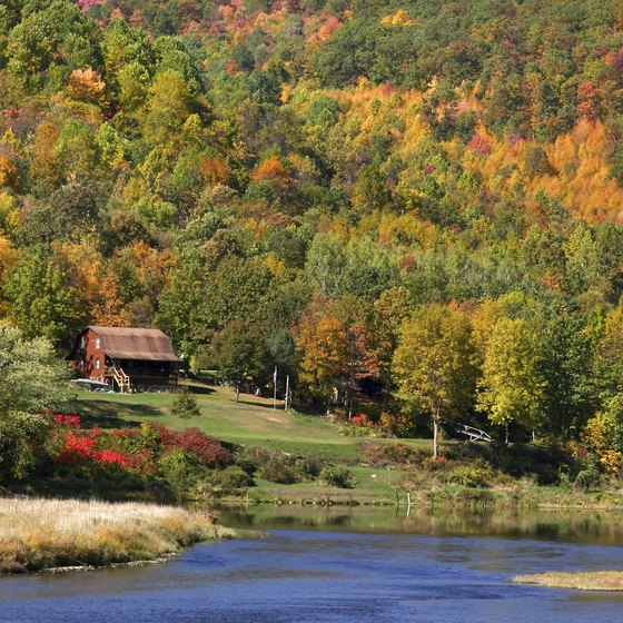 Pet Friendly Cabins in the Mountains of Pennsylvania