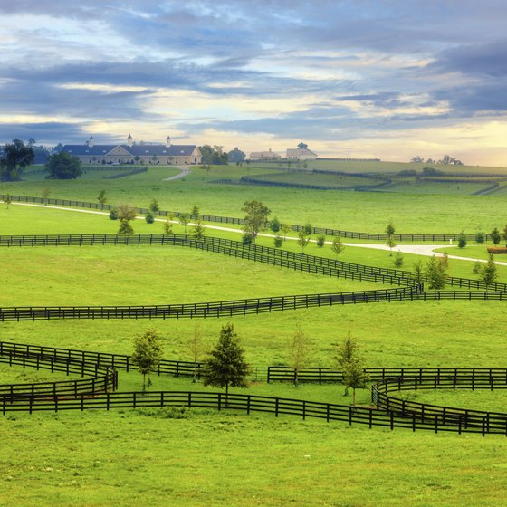 You'll see horse farms and striking views of the Appalachian Mountains throughout Kentucky.