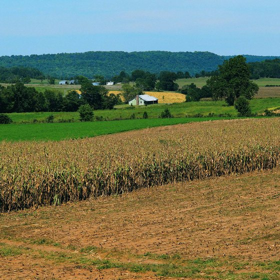 Farms and forests near Mammoth Cave National Park.