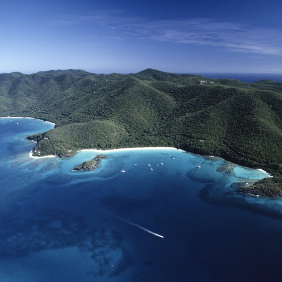 The U.S. Virgin Islands were purchased from Denmark in 1917.